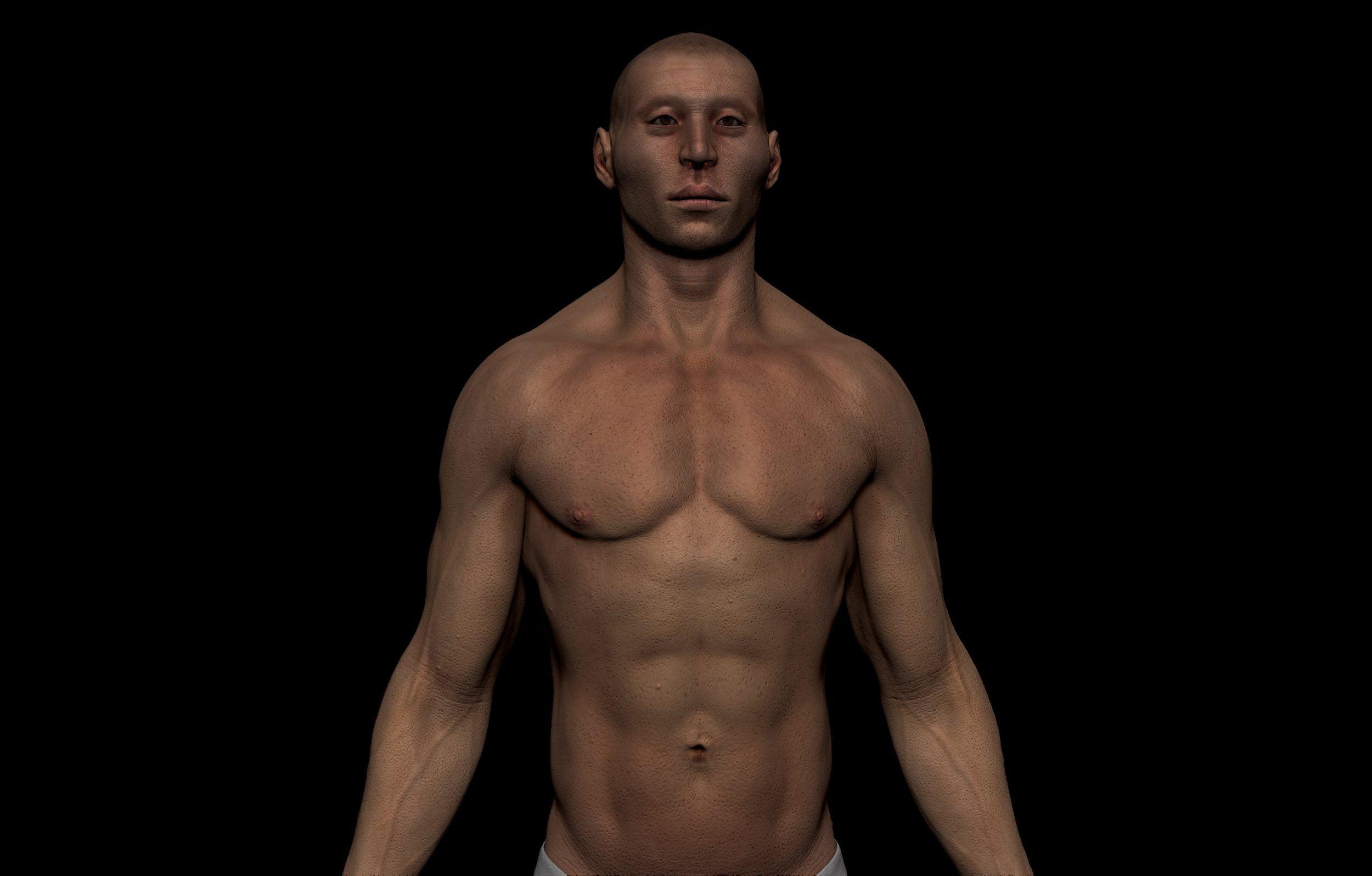 1 2 scaled SA Anatomy   Study Anatomy in 3D