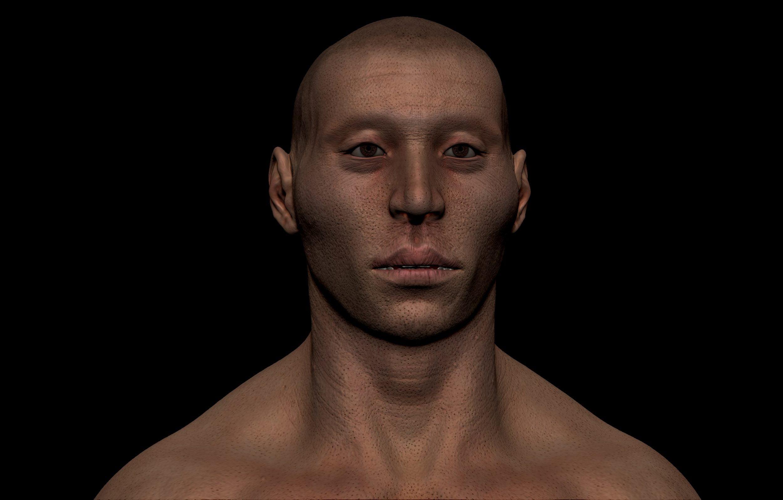 12 scaled SA Anatomy   Study Anatomy in 3D