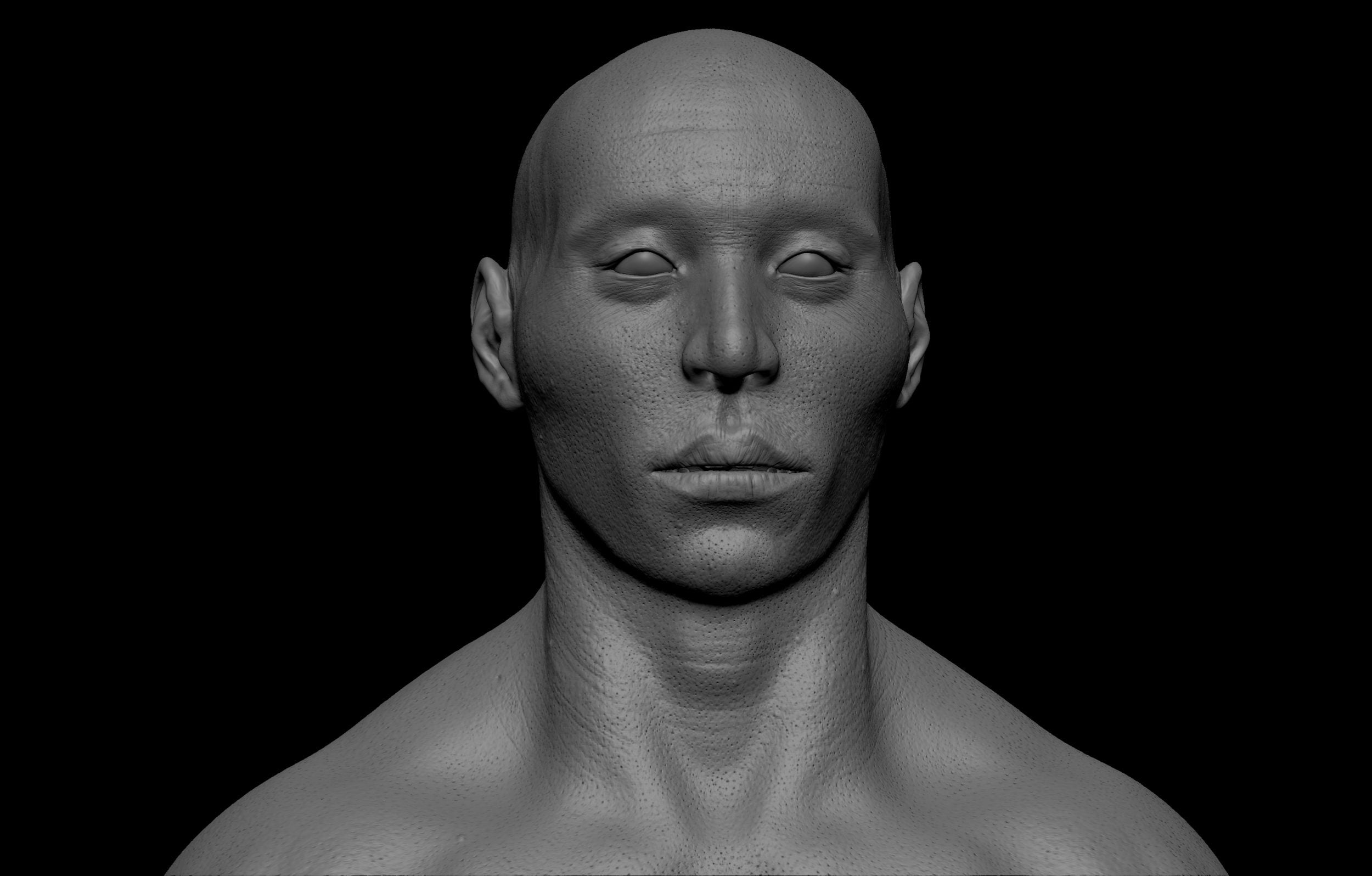 13 scaled SA Anatomy   Study Anatomy in 3D