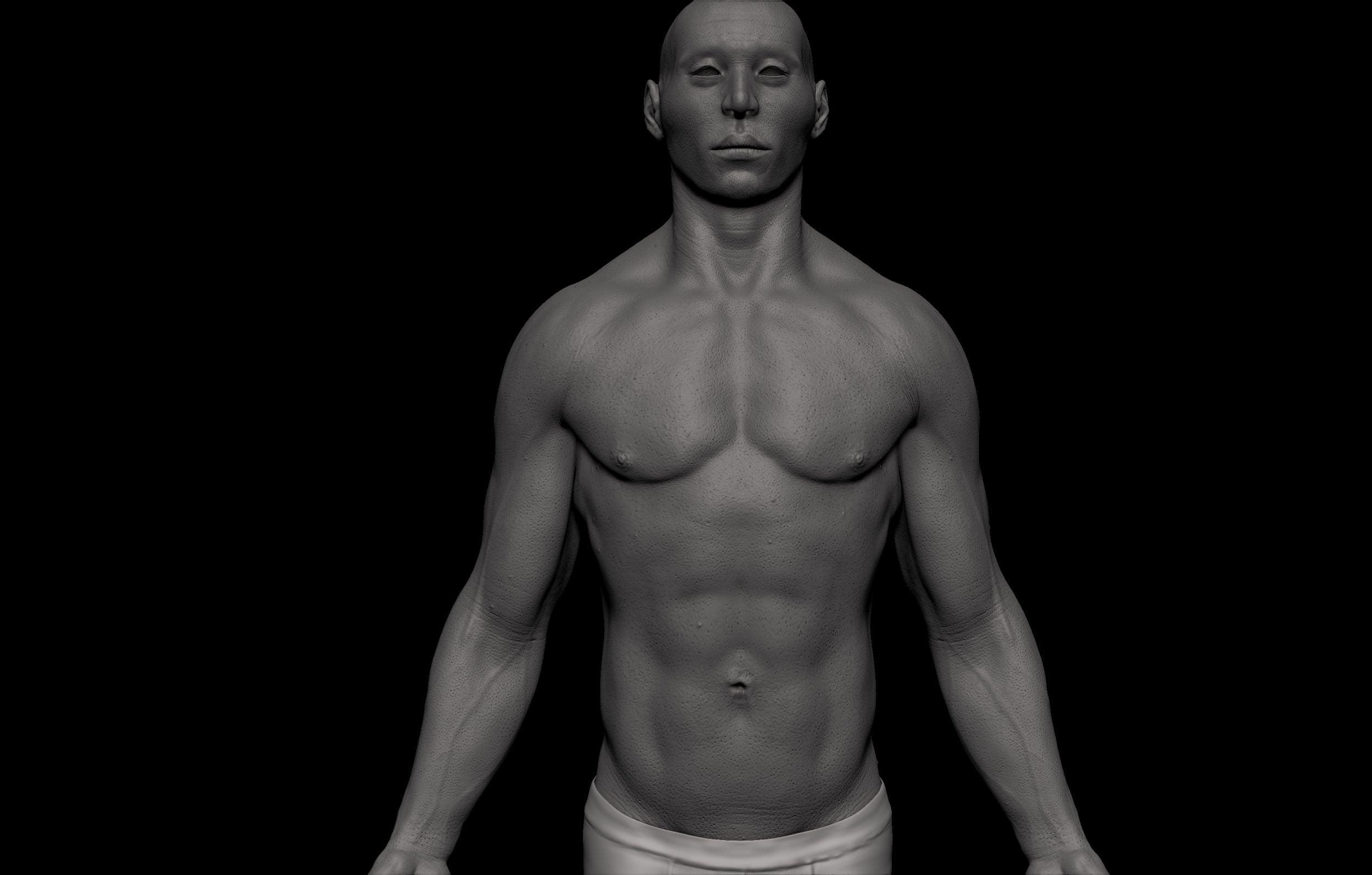 15 1 scaled SA Anatomy | Study Anatomy in 3D
