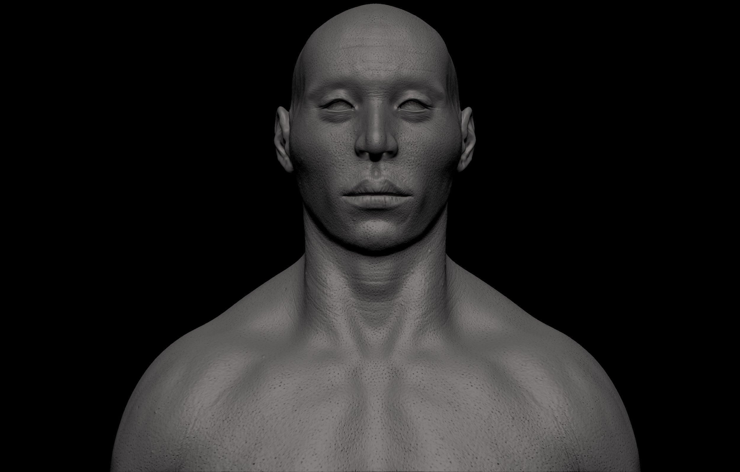 17 1 scaled SA Anatomy | Study Anatomy in 3D