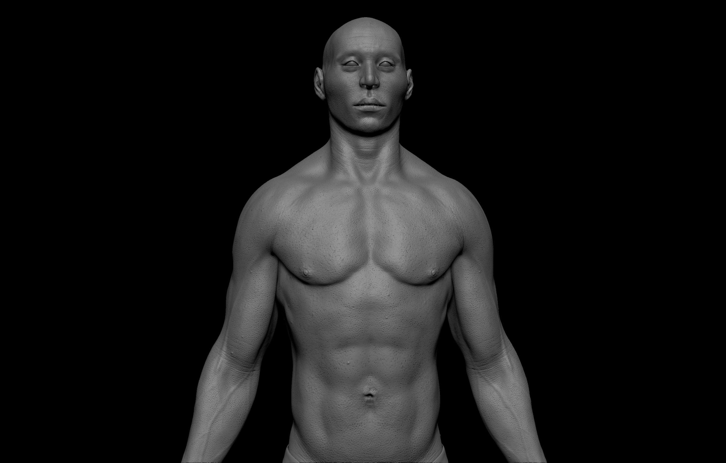 4 scaled SA Anatomy   Study Anatomy in 3D