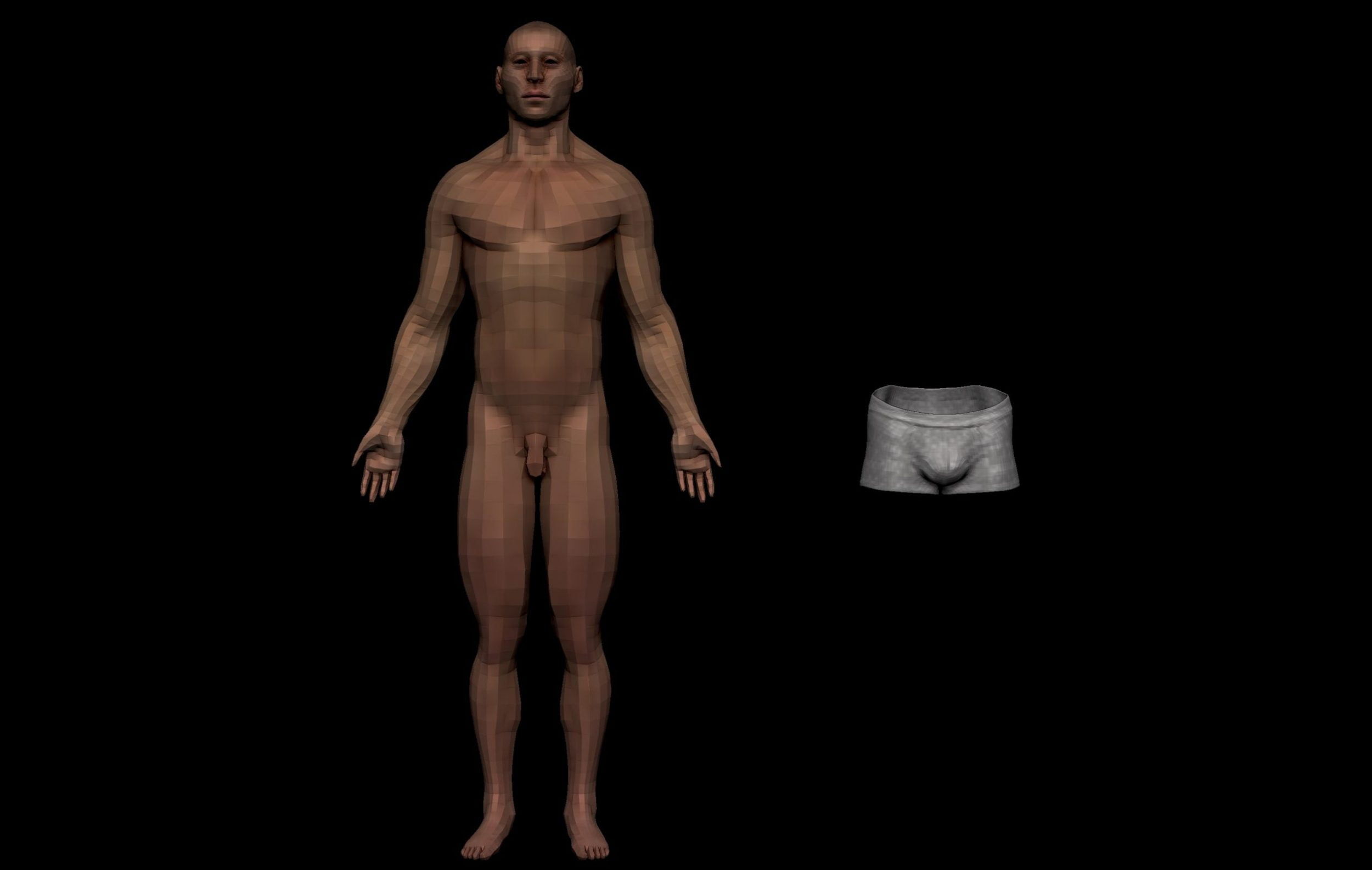 integumentary male scaled SA Anatomy   Study Anatomy in 3D