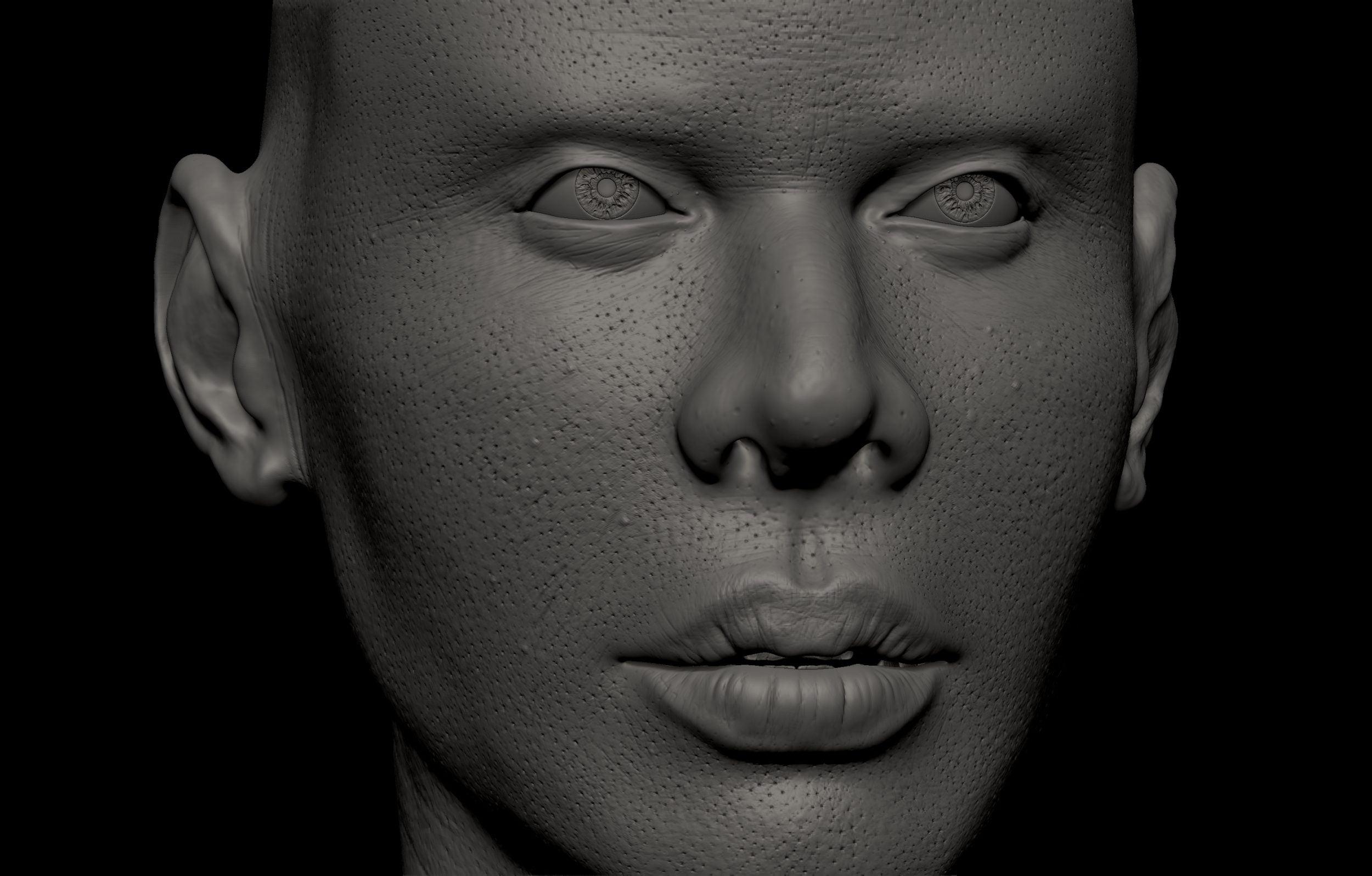 22 scaled SA Anatomy | Study Anatomy in 3D