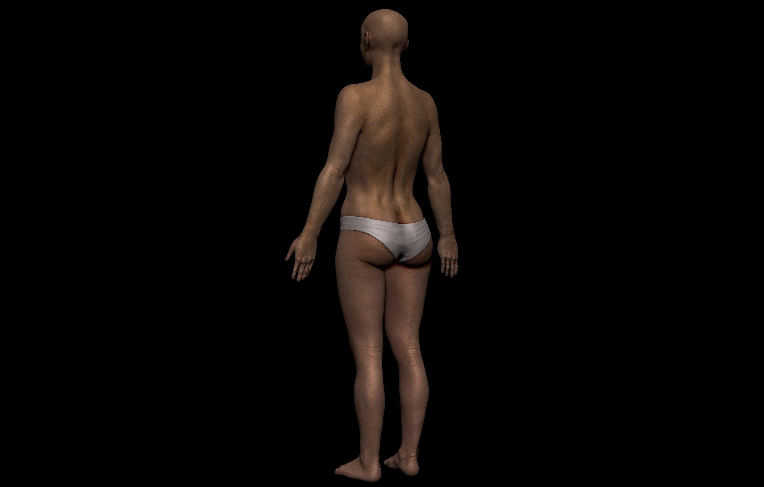 4 2 scaled SA Anatomy | Study Anatomy in 3D