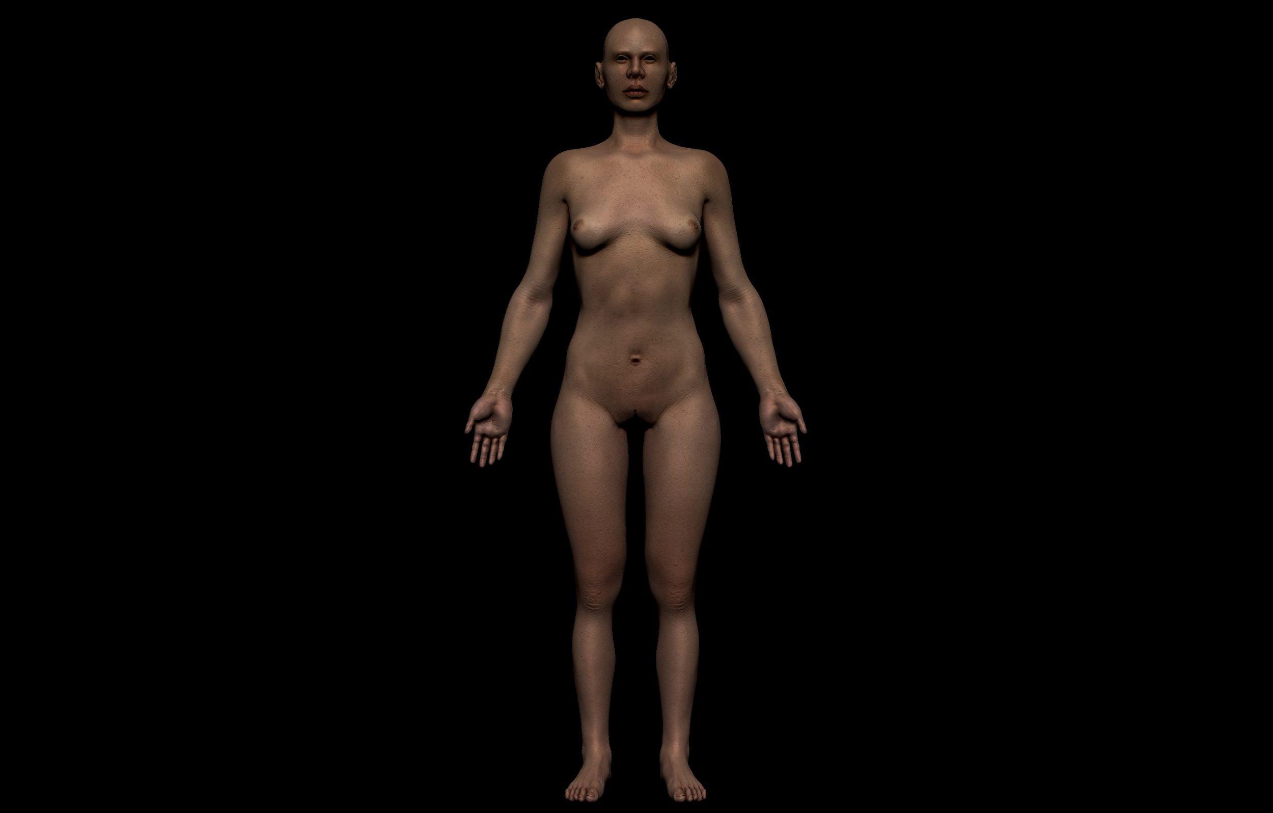 6 2 scaled SA Anatomy | Study Anatomy in 3D