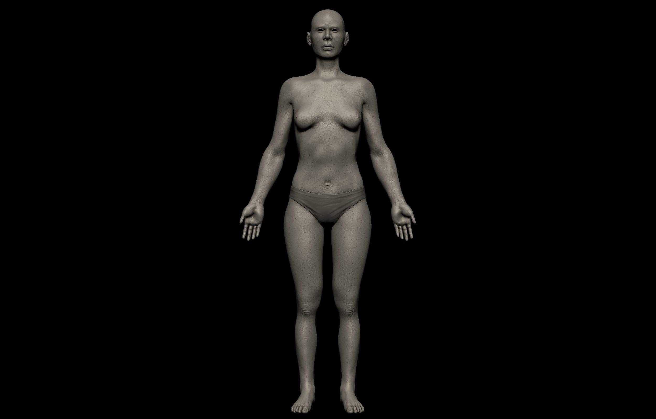 7 2 scaled SA Anatomy | Study Anatomy in 3D