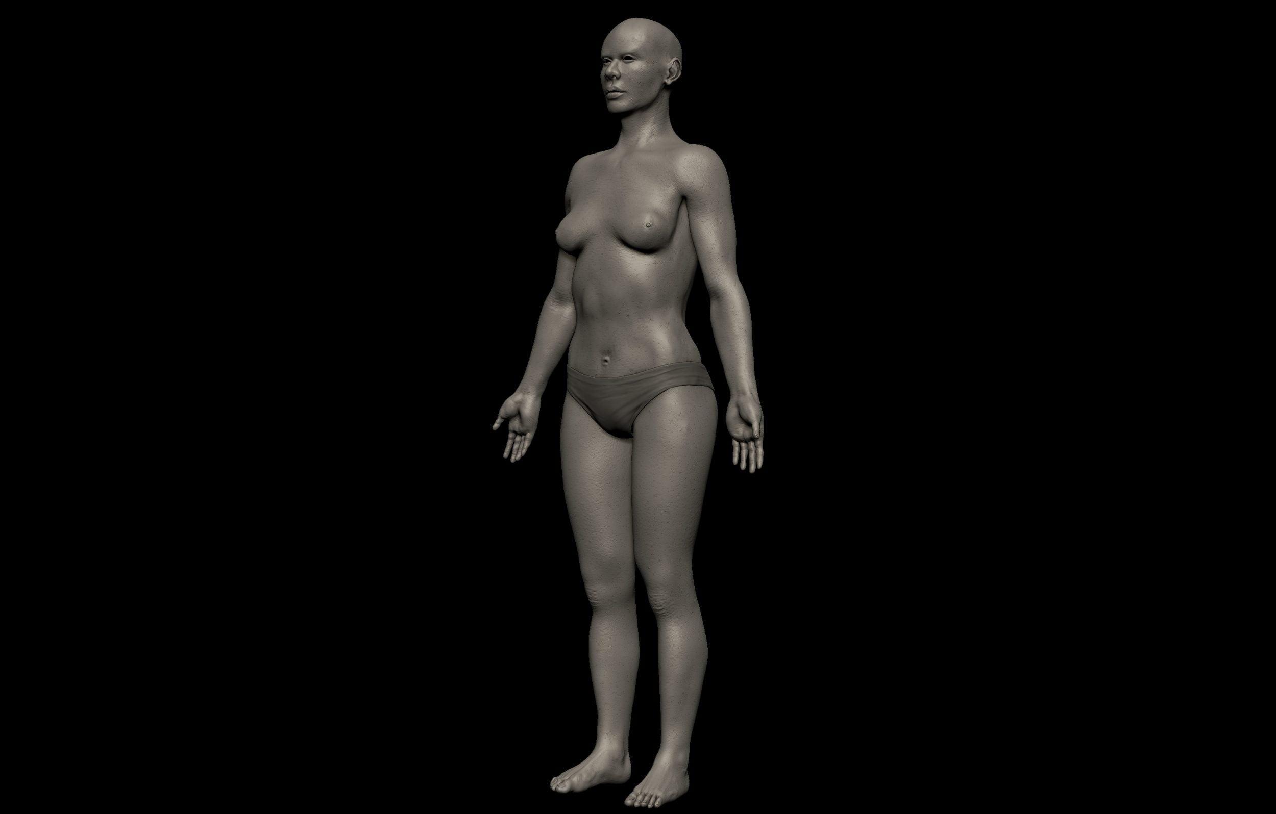 8 2 scaled SA Anatomy | Study Anatomy in 3D